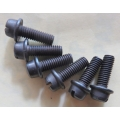 Fuel Pump Screws - hold valve housing to pump body, AC, Goss, Carter, Holley, others (900.10-32S)